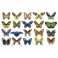 "Вафельная картинка ""Бабочки №9"""