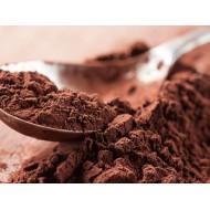 Какао-порошок алкализованный 22/24%