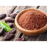 Какао-порошок алкализованный 10/12%